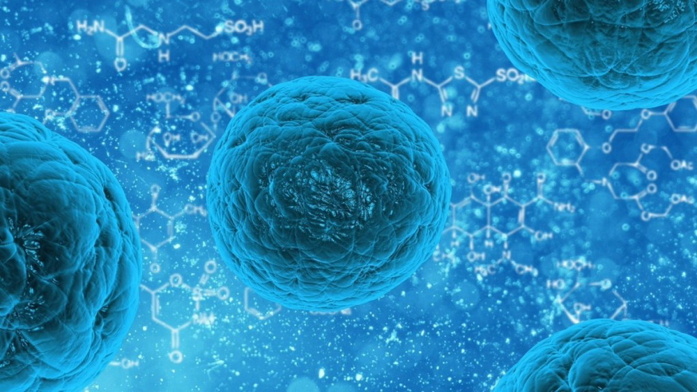 stem-cell-163711[1]
